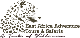 East Africa Adventure Tour & Safaris
