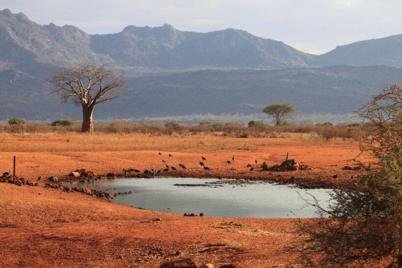 kenya-2165639_1280